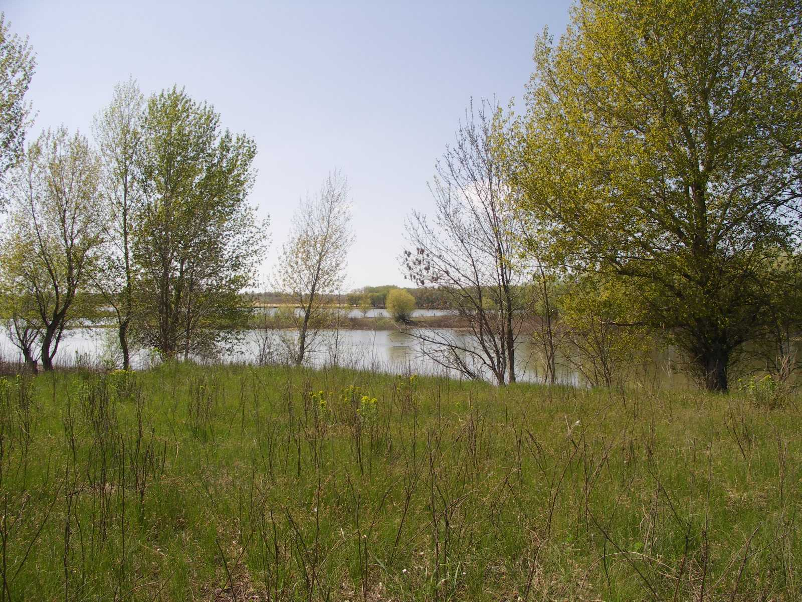река Енотаевка, вид с острова