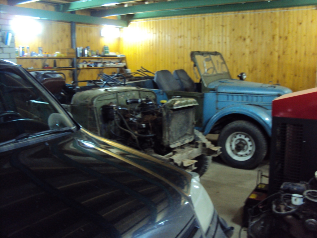 Газон и донор в гараже.JPG