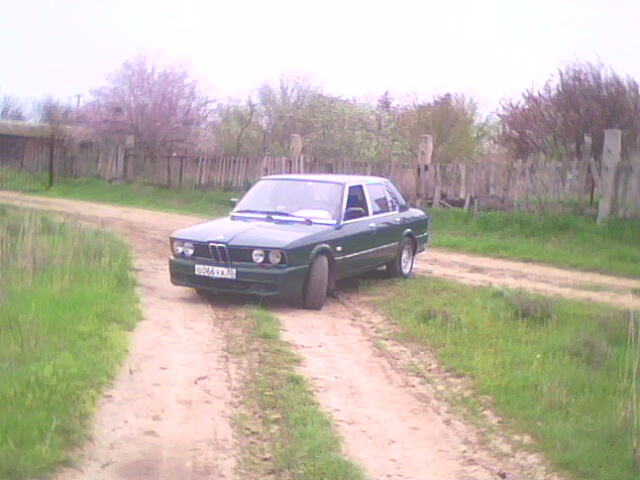 IMG0083A.jpg