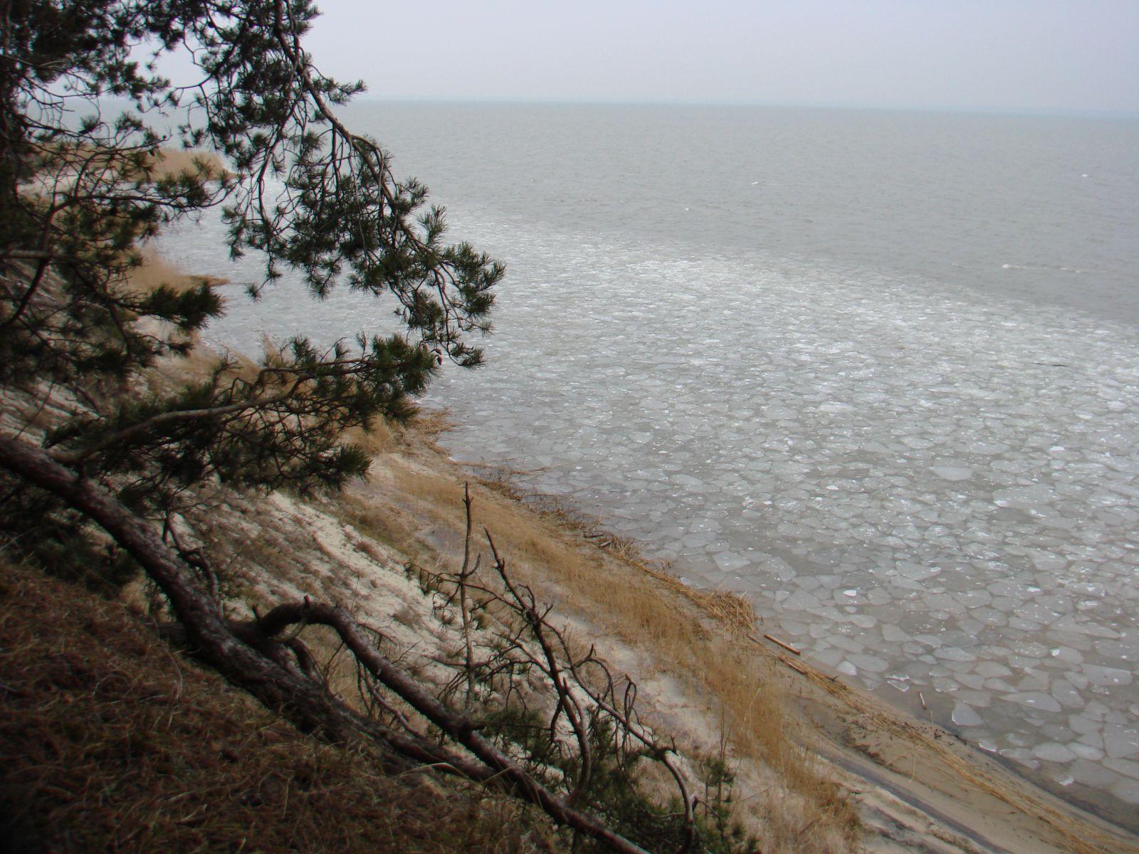 Зима залив