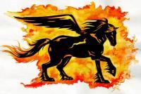 SciFi.Fantasy.Black-Pegasus.pegas.jpg.rZd.87843.jpg