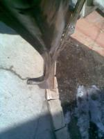 post-13731-0-67188100-1332672167_thumb.jpg