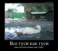 post-11938-0-00920400-1488386147_thumb.jpg