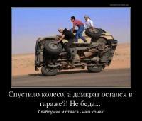post-11938-0-22163700-1488386210_thumb.jpg