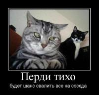 post-15585-0-48026800-1368015429_thumb.jpg