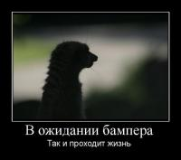 post-2522-1277494409,7226_thumb.jpg