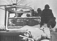 5th_ID_Motorized_Troops-1944.jpg