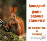 post-8866-0-24698900-1387559915_thumb.jpg
