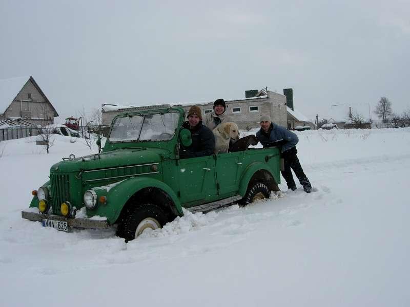 докопались по травы, снега ровно по колено...