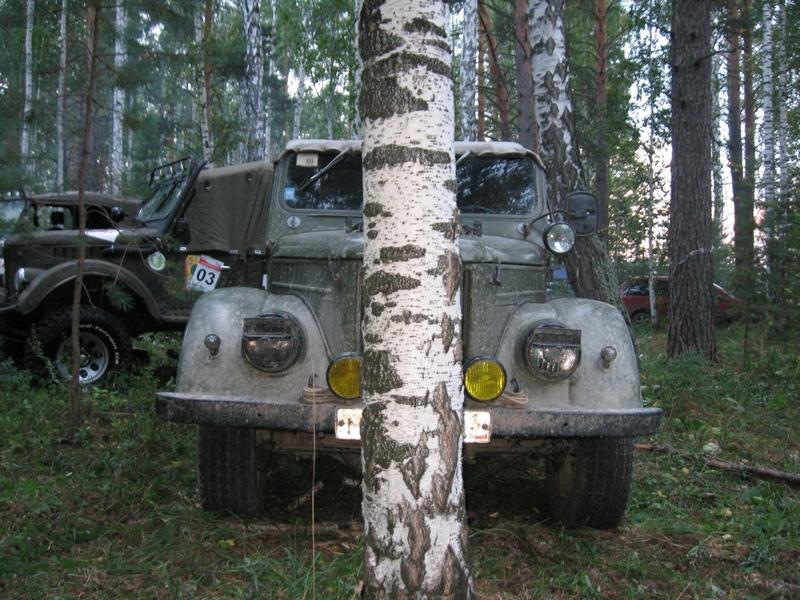 Газоны в лесу